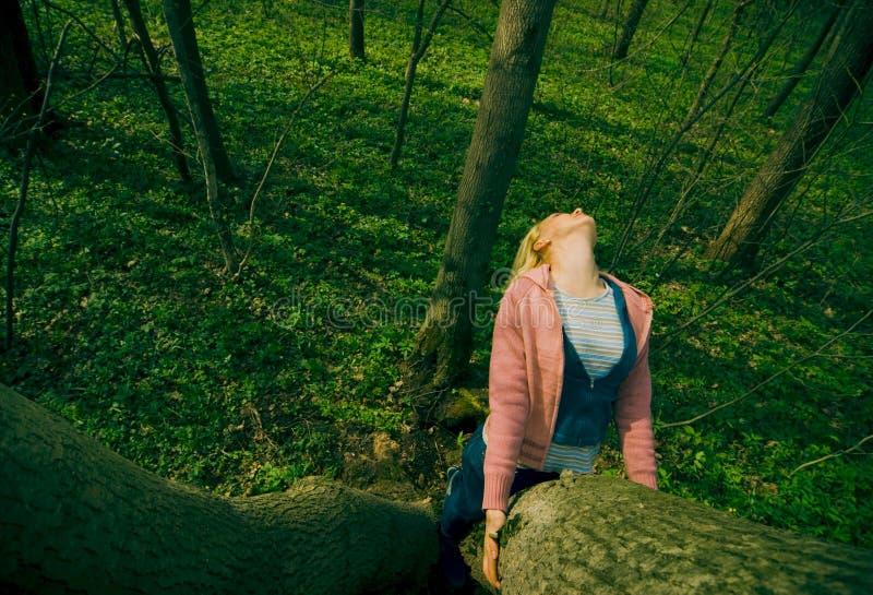 Steigender Baum des Mädchens lizenzfreies stockfoto