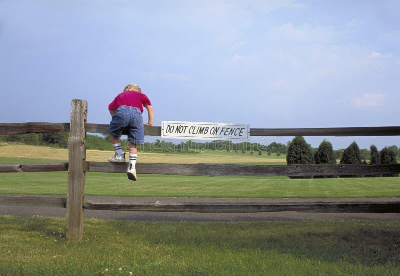 Steigender Zaun des Jungen stockfotos