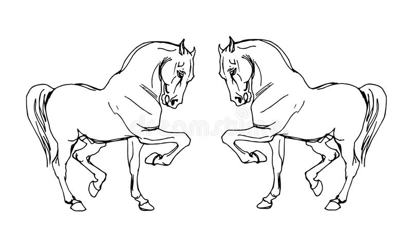 Steigeren de ??????two geschilderde paarden voor elkaar royalty-vrije illustratie
