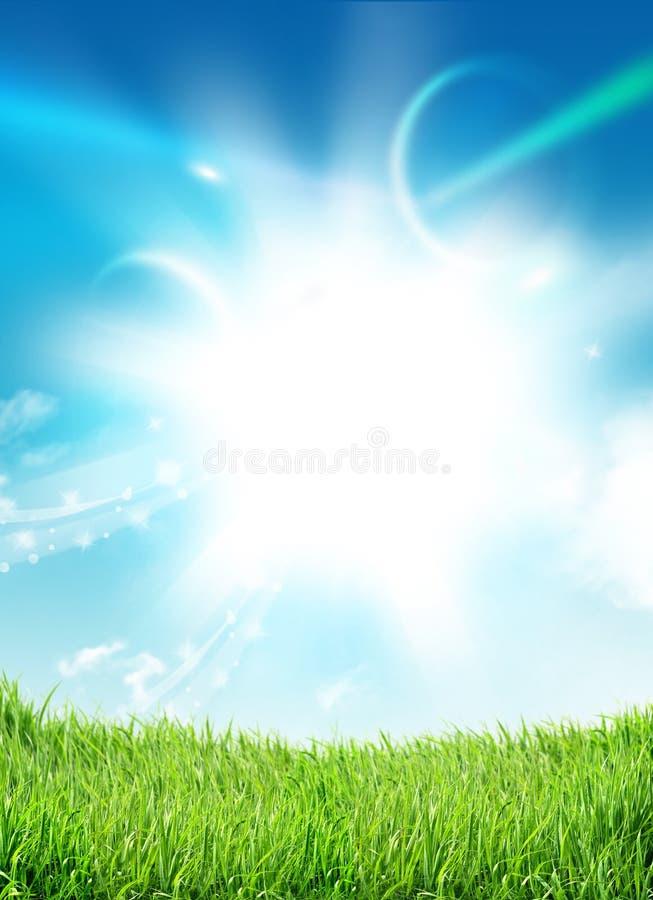 Steile het gras van de hemel royalty-vrije illustratie