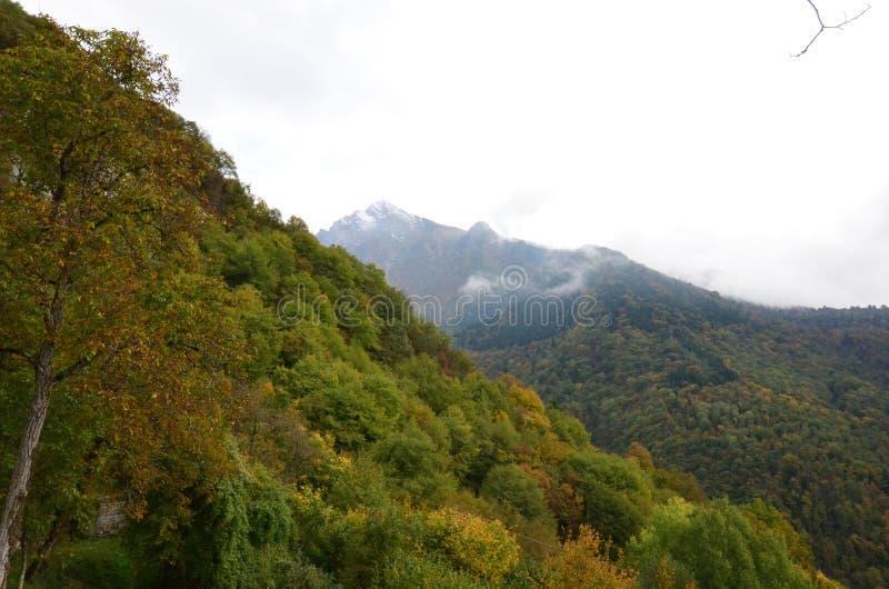 Steile heuvels in het platteland van noordelijk Italië stock afbeeldingen