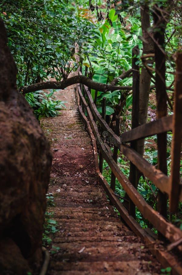 Steile stappen - onderaan een weg in een bos naast een rots stock foto's