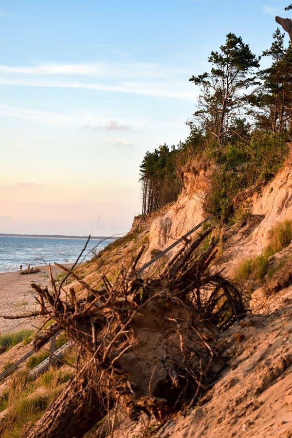 Steiles Ufer Sandys in der Ostsee in Jurkalne bei Sonnenuntergang lizenzfreie stockbilder