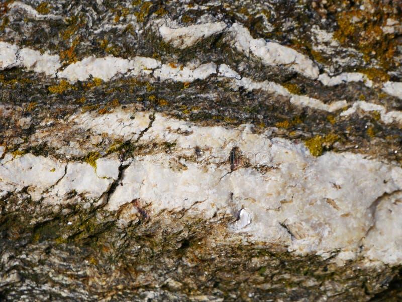 Stein- grafischer Hintergrund oder Muster des Gneises stockfoto
