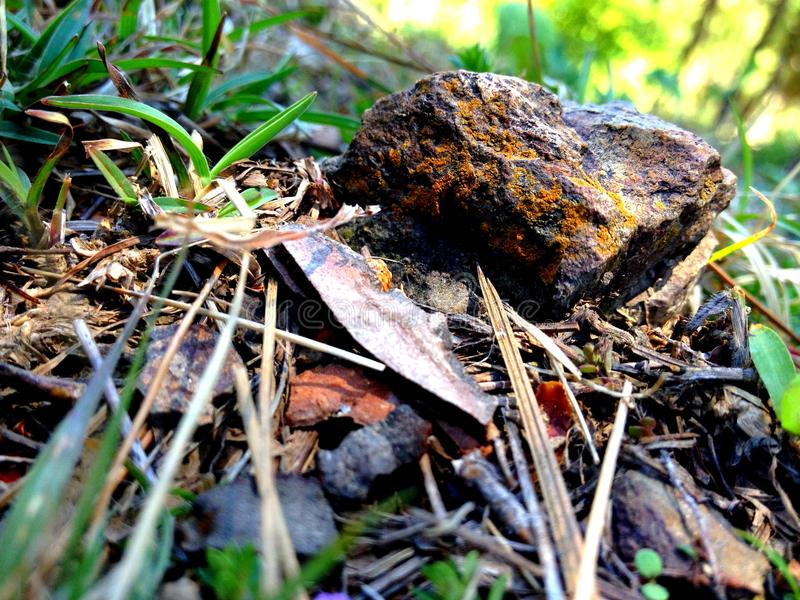Stein am Gras lizenzfreies stockfoto