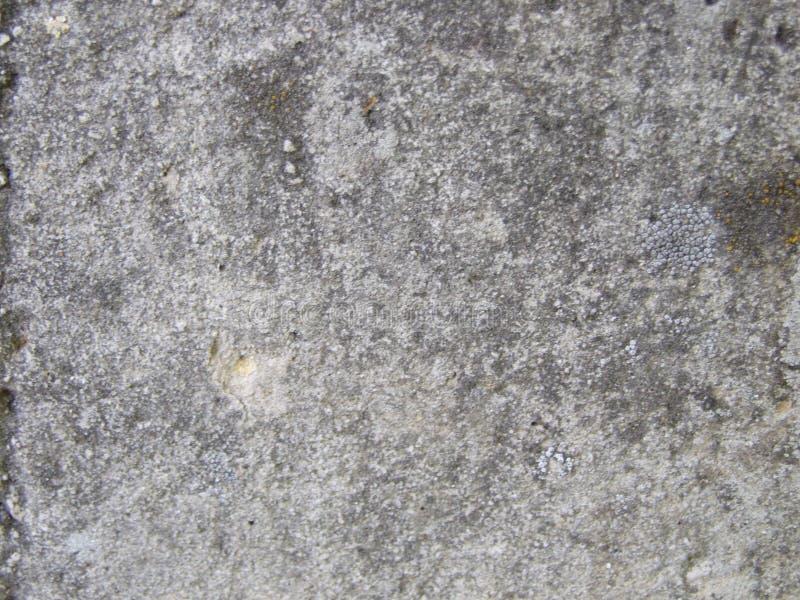 Steinbeschaffenheit stockbilder
