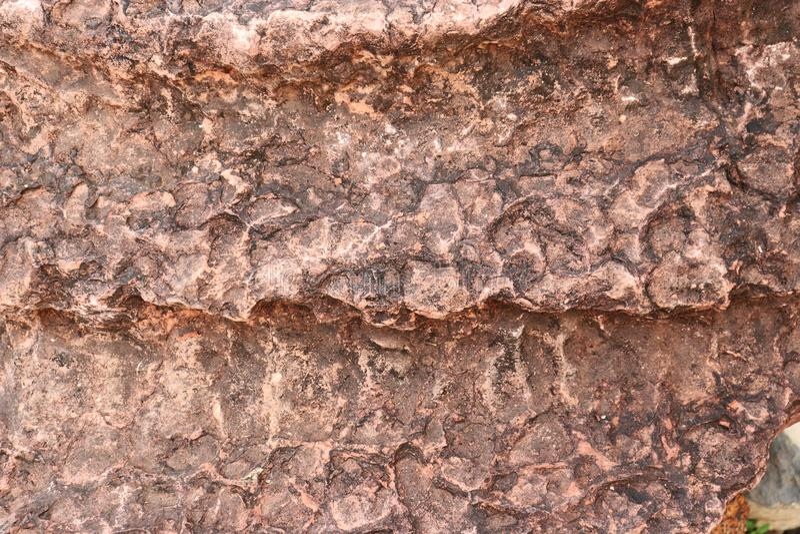 Steinbeschaffenheit Stromatolite - Hintergrund stockfoto