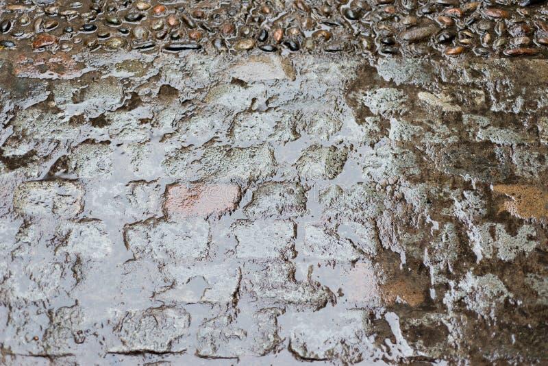 Steinboden mit Regen stockfotografie