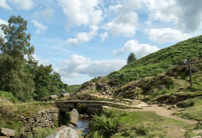 Steinbrücke an Bronte-Fällen stockbilder