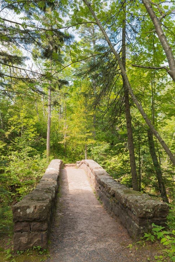 Steinbrücke unter den Bäumen lizenzfreie stockbilder