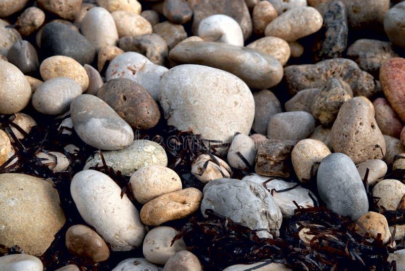 Steine auf dem Strand lizenzfreies stockfoto