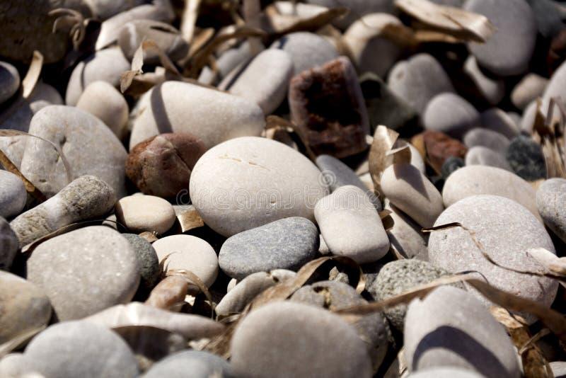 Steine auf dem Strand stockfotos
