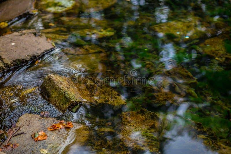 Steine im Wasser lizenzfreies stockbild