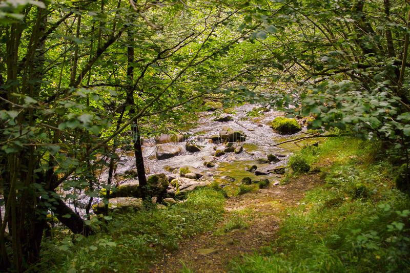 Steine in Majaceite-Fluss in EL Bosque, Spanien stockfotos