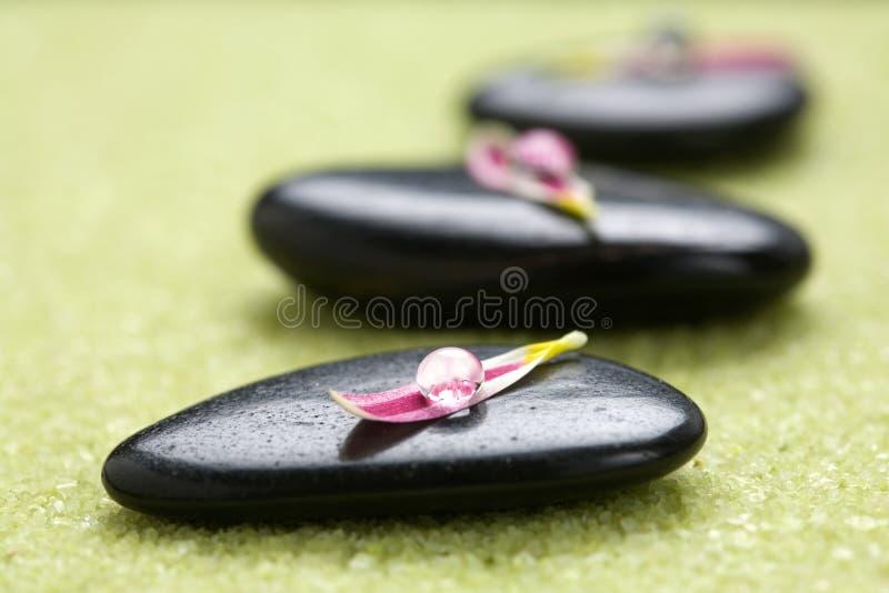 Steine mit den Blumenblumenblättern lizenzfreies stockbild