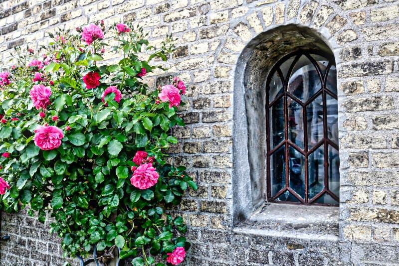Steine und Rosen stockfotografie