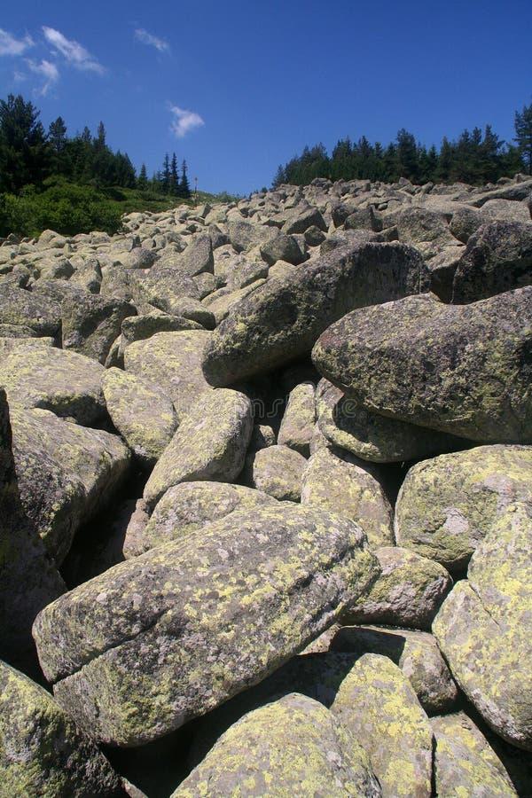 Steine in Vitosha lizenzfreies stockbild