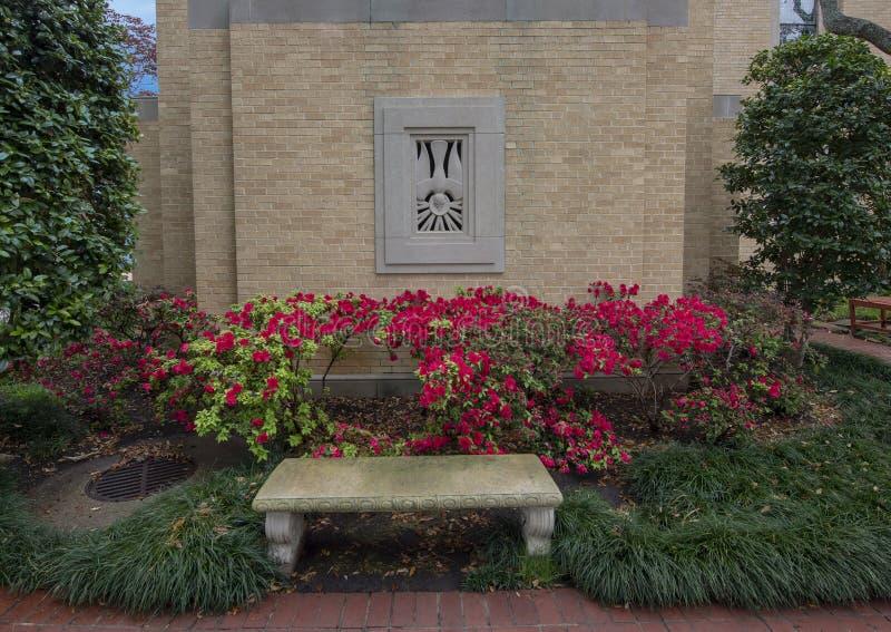 Steinentlastung einer Taube hinter einer Bank und einer Hecke von roten Blumen bei Christus der König Catholic Church in Dallas,  lizenzfreie stockfotografie