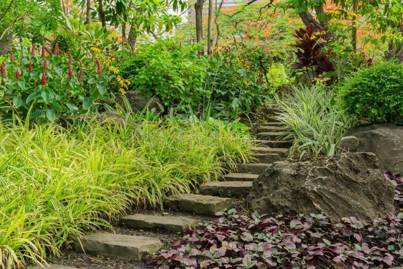 Steinfußweg im Garten stockfoto