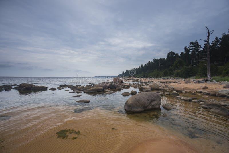 Steinige Küste Vidzeme stockfoto