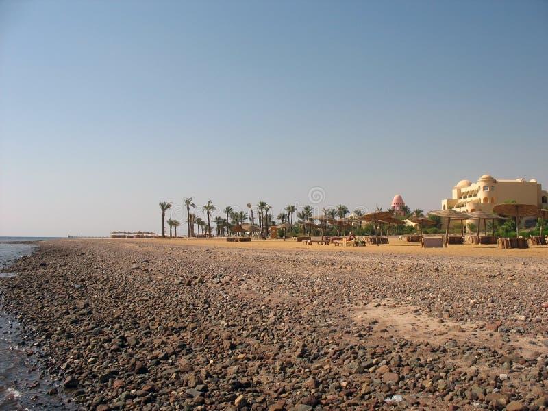 Steinige Küste von Rotem Meer stockfoto
