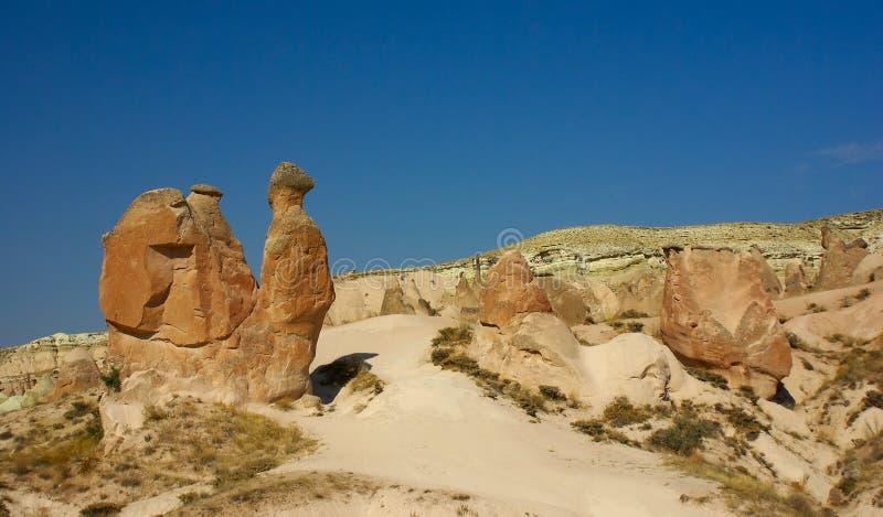 Steinkamel in Cappadocia, die Türkei stockfotografie