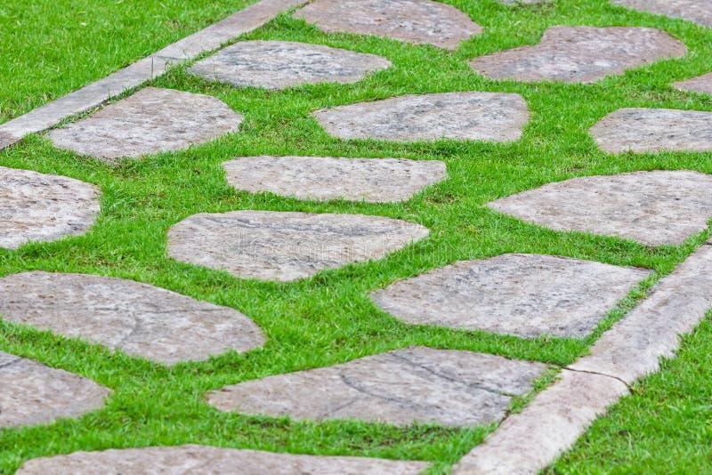 Steinpfad auf grünem Gras lizenzfreie stockbilder
