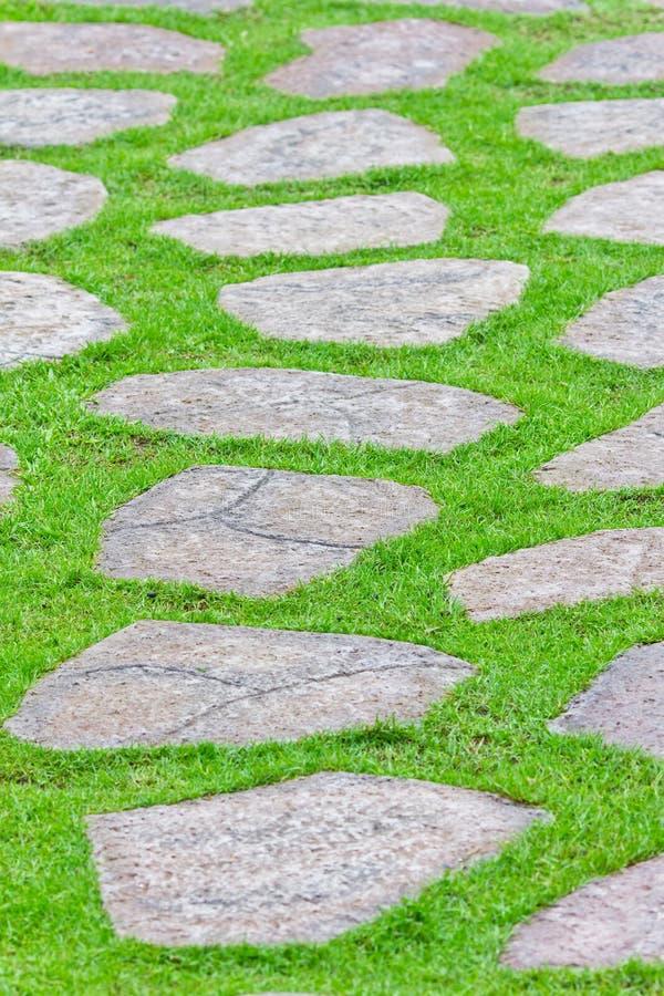 Steinpfad auf grünem Gras stockbild