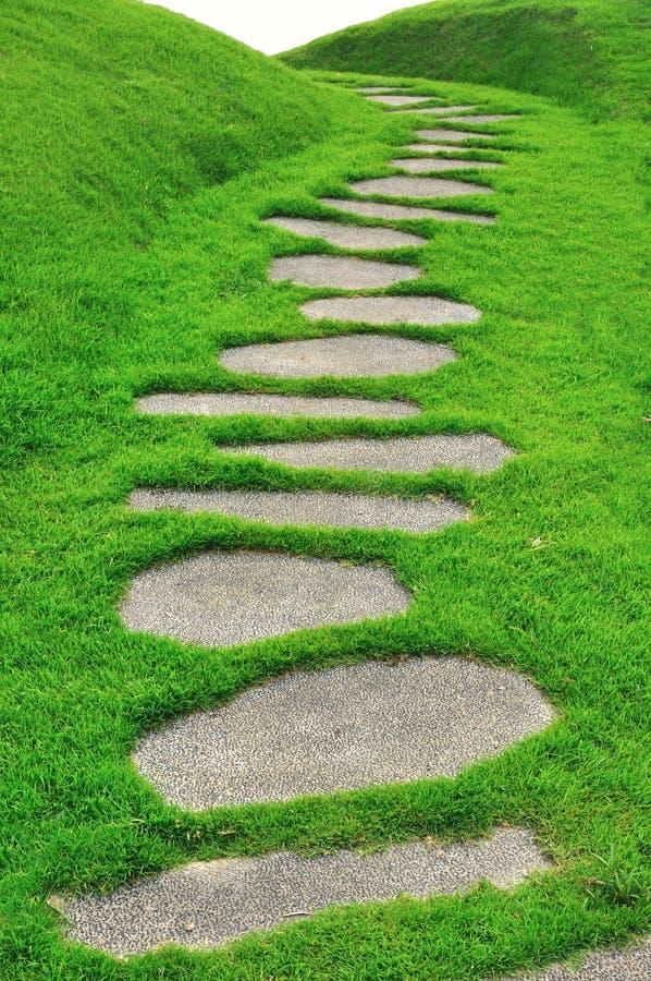 Steinpfad auf grünem Gras lizenzfreies stockfoto