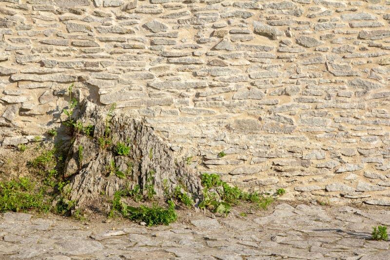 Steinpflasterung und Wand an einem sonnigen Tag stockfotos