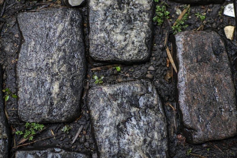 Steinpflasterungsbeschaffenheit Cobblestoned Plasterungshintergrund des Granits stockfoto