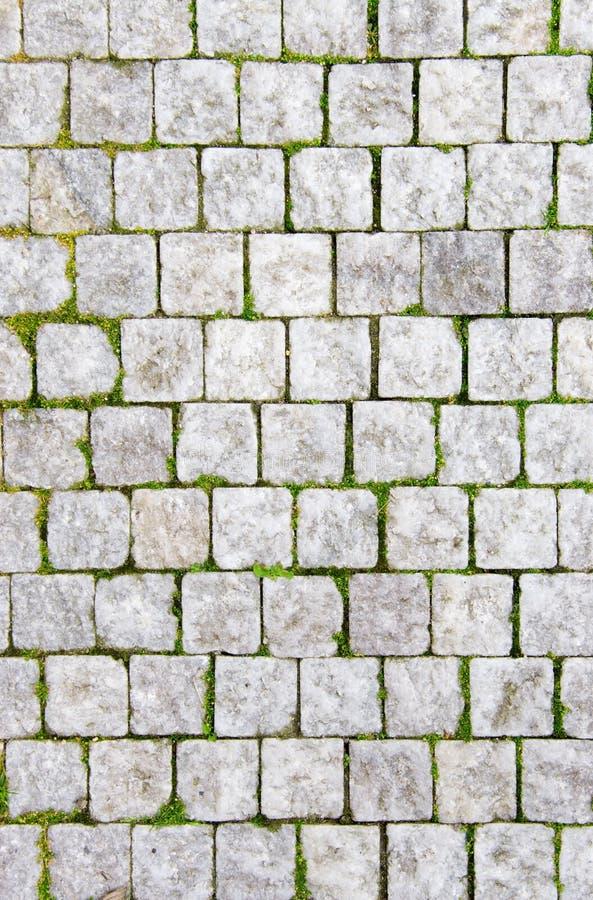 Steinplasterung stockbild