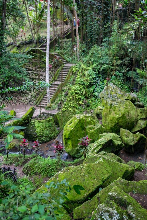 Steinplattentreppe herauf einen kleinen Hügel unter grünem Baum lizenzfreie stockbilder