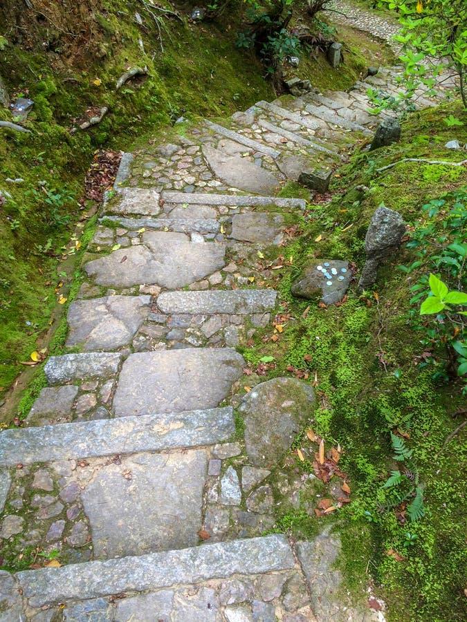 Steintreppe mit moosigem Felsen lizenzfreie stockbilder