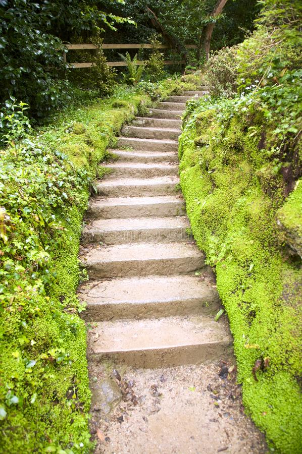 Steintreppen am Garten lizenzfreies stockfoto