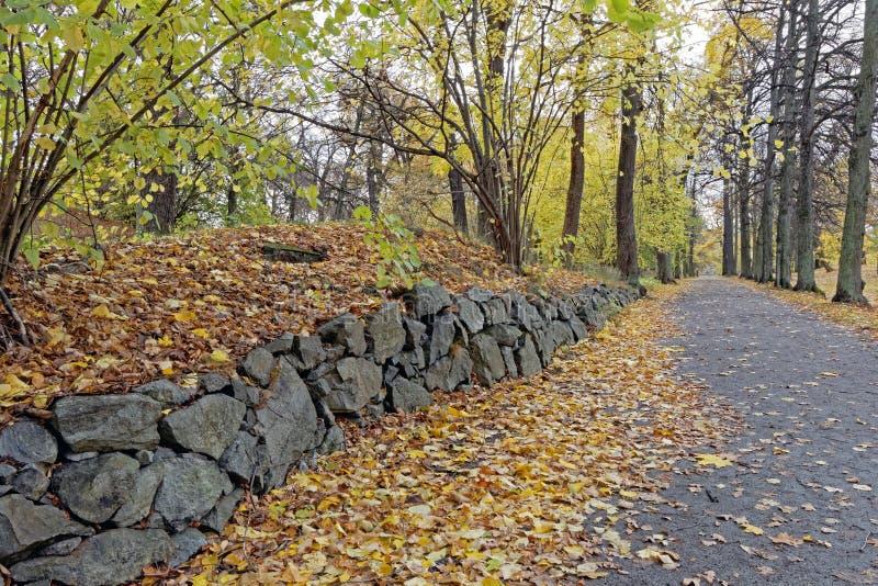 Steinwand im Park stockfoto