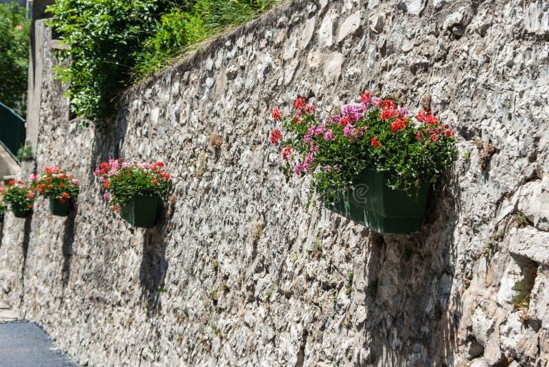 Steinwand mit Pelargonienanlagen in den Kästen stockbild