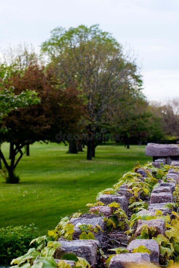 Steinwand und Bäume lizenzfreie stockfotografie