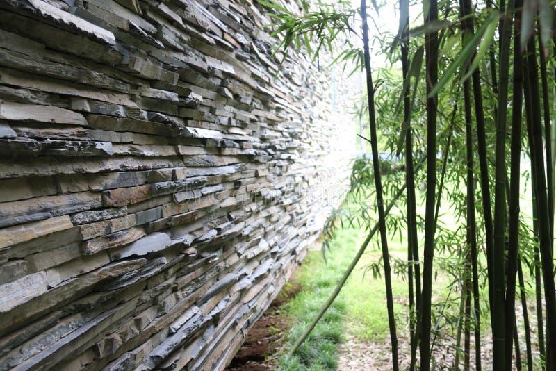 Steinwand und Bambus lizenzfreie stockfotos