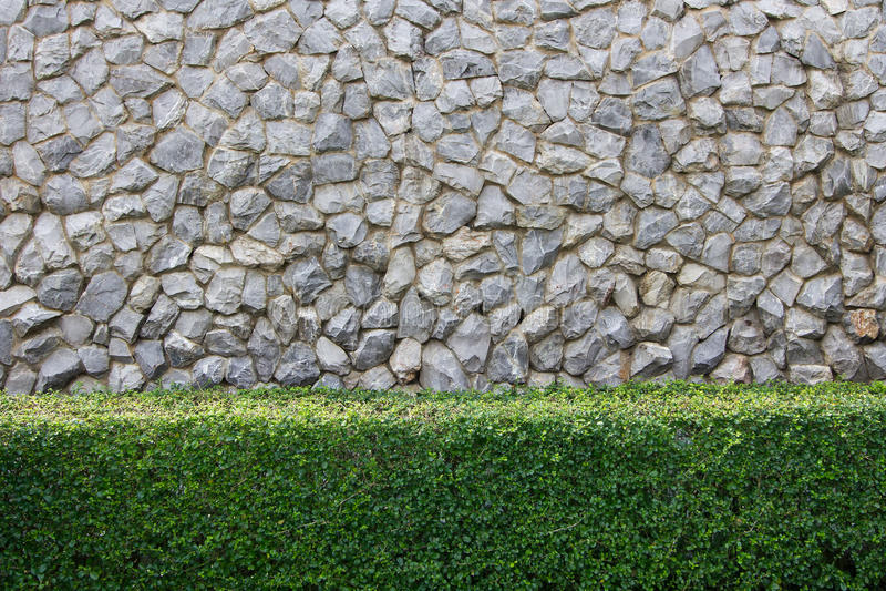 Steinwand und dekorativer Garten lizenzfreie stockbilder