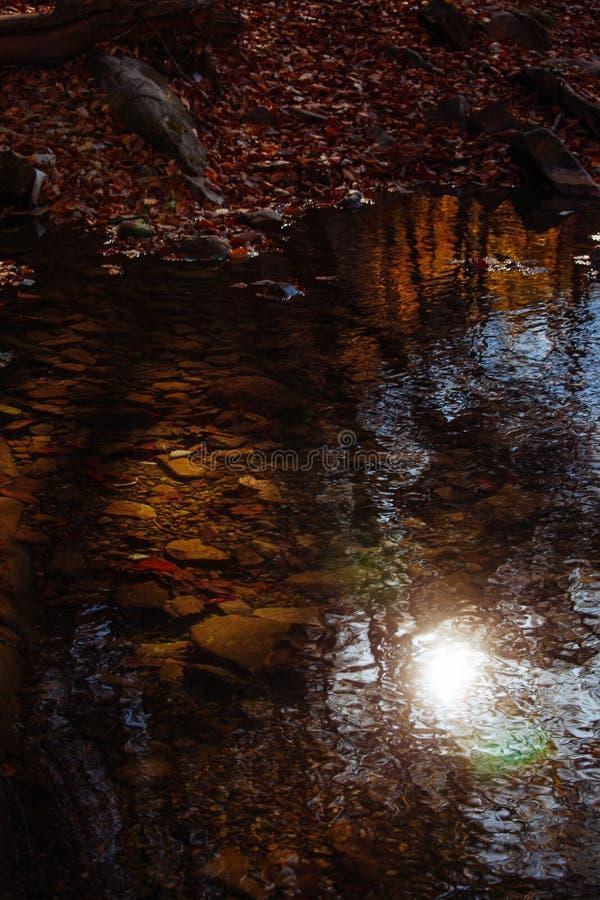 Steinwasserfallreflexionswaldwasserherbstbaumsonnenlandschaftsgelbpark verlässt lizenzfreie stockfotos