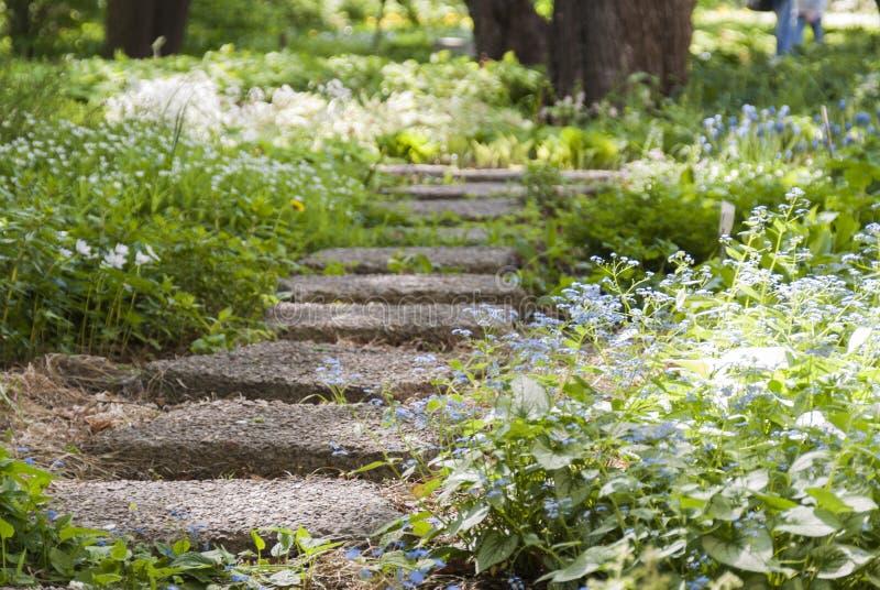 Steinweg in einem Park überwältigt mit Blumen lizenzfreies stockfoto