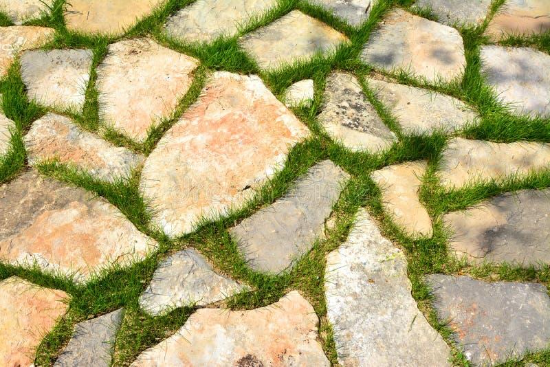 Steinweg im Gartenmuster des grünen Grases lizenzfreie stockbilder