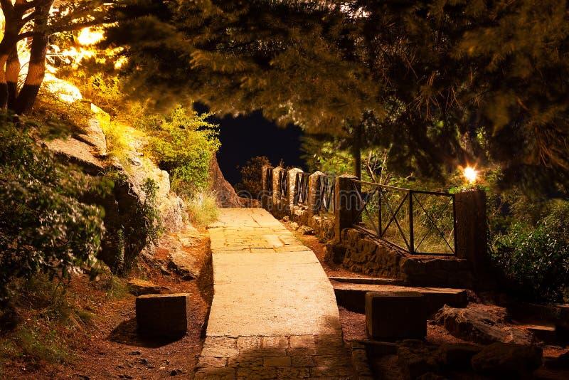 Steinweg im Park nachts lizenzfreies stockbild