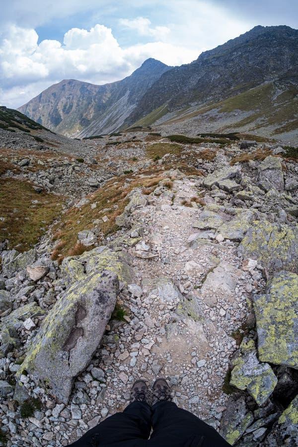 Steinziegelstein tectured Muster in der Natur stockfotos