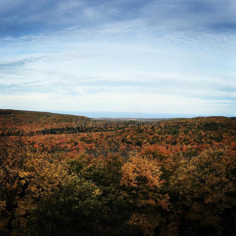 Stekelvarkenbergen, Michigan stock foto's