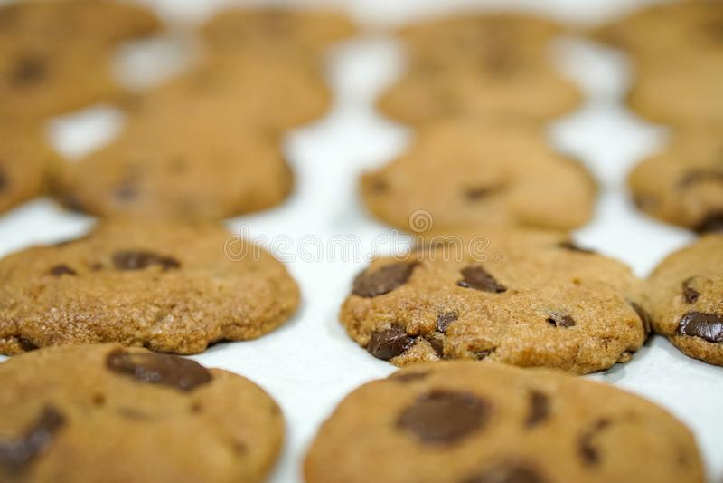 Stekheta nya hemlagade choklade kakor på magasinet royaltyfria bilder