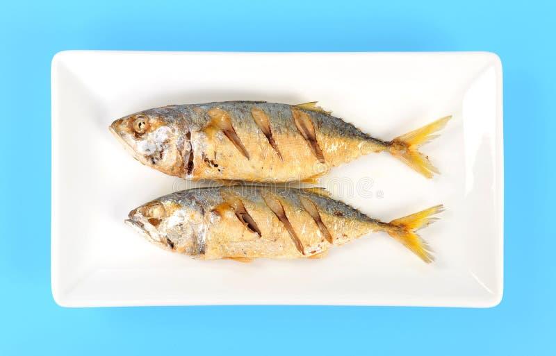 stekt fisk arkivbilder