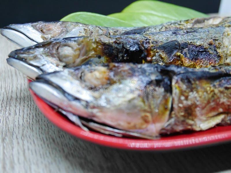 Stekt fisk med läcker sås som är klar att äta royaltyfri foto