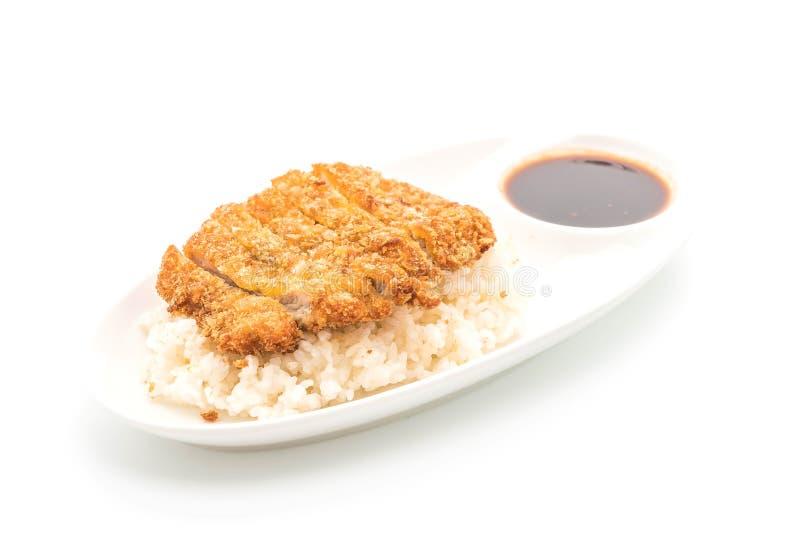 stekt griskött på överträffade ris (tonkatsuen) fotografering för bildbyråer